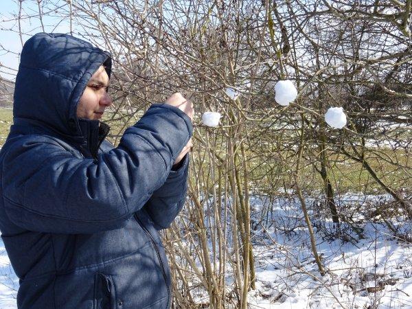 winter-dsc00462