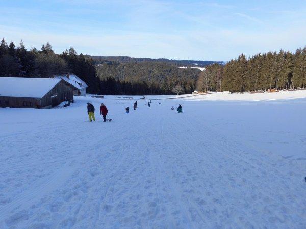 rodeln-im-hirzwald-dsci0825