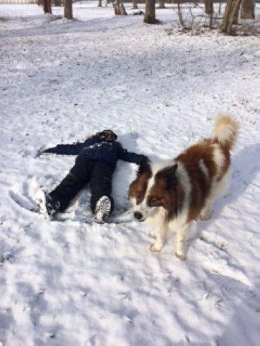 schneespaziergang-togo-img_9569